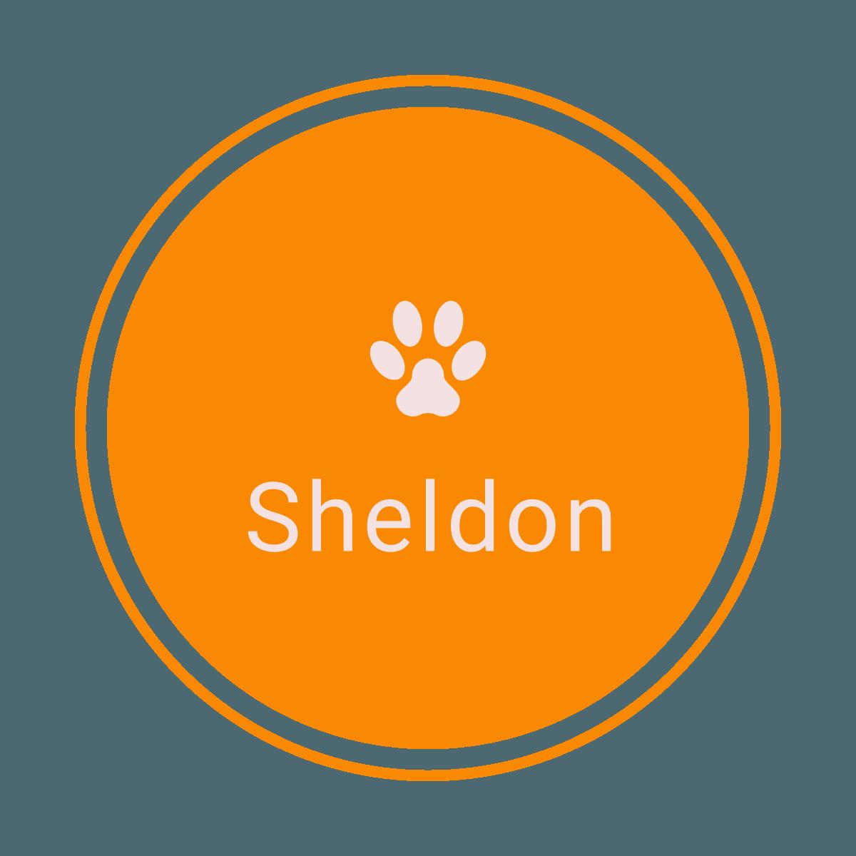 sheldon_corgi_logo_transparent