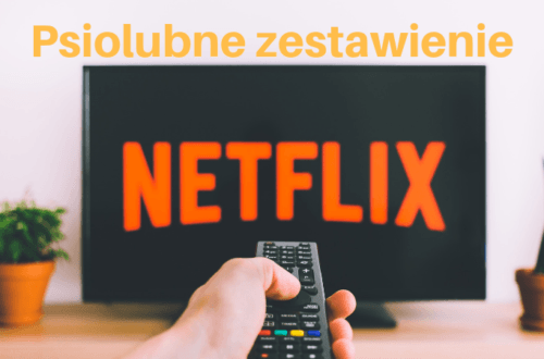 Sheldoncorgi.pl Blog o psach Welsh Corgi Pembroke - najlepsze filmy o psach Netflix