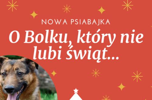 Bolek_ktory_nie_lubil_swiat
