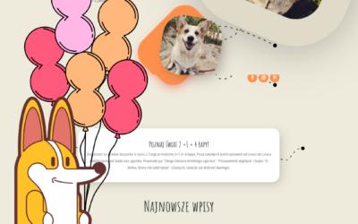 1 urodziny bloga – podsumowanie!