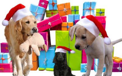 Prezenty dla  właścicieli psów – święta 2019